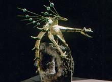 jacques-monestier-carre-1968-onestiosaure